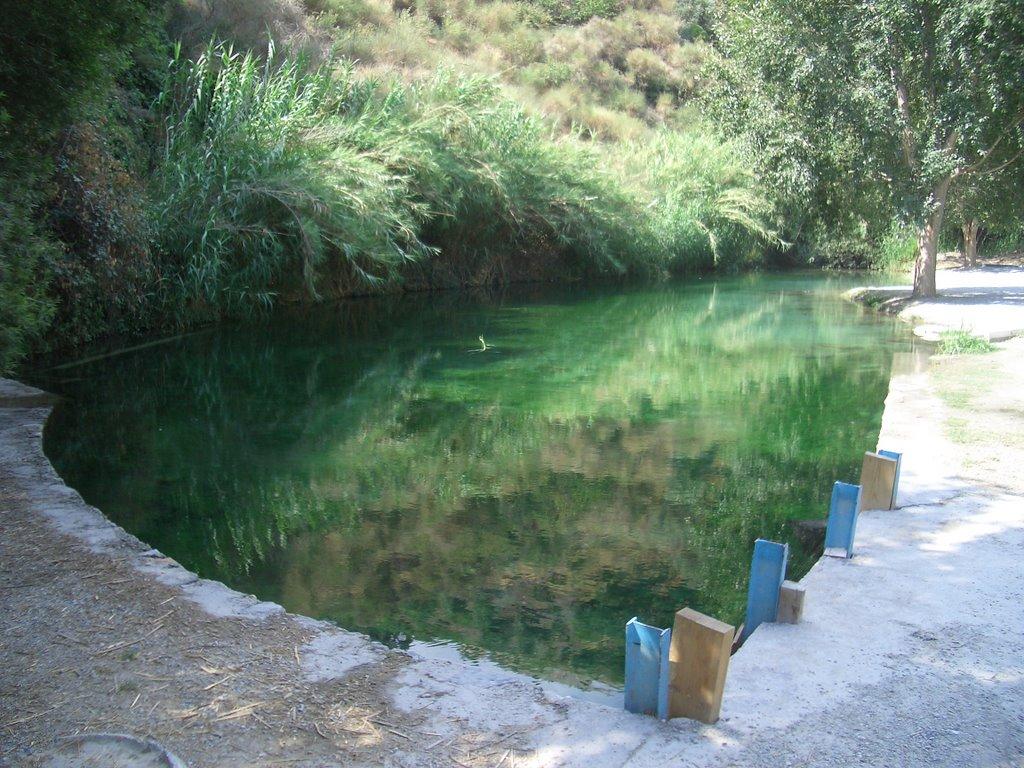 Poza de Los Paules - Granada